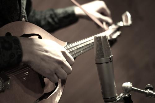 Mandolin mic